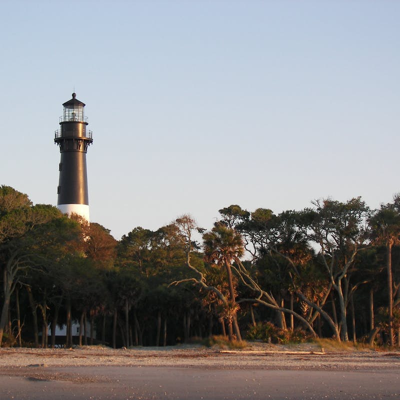 Tall black and white lighthouse partially obscured by cluster of trees along a sandy beach