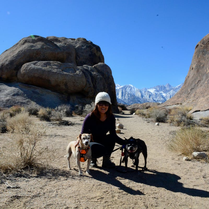 Dr. Na and her two dogs on a hike in the desert.