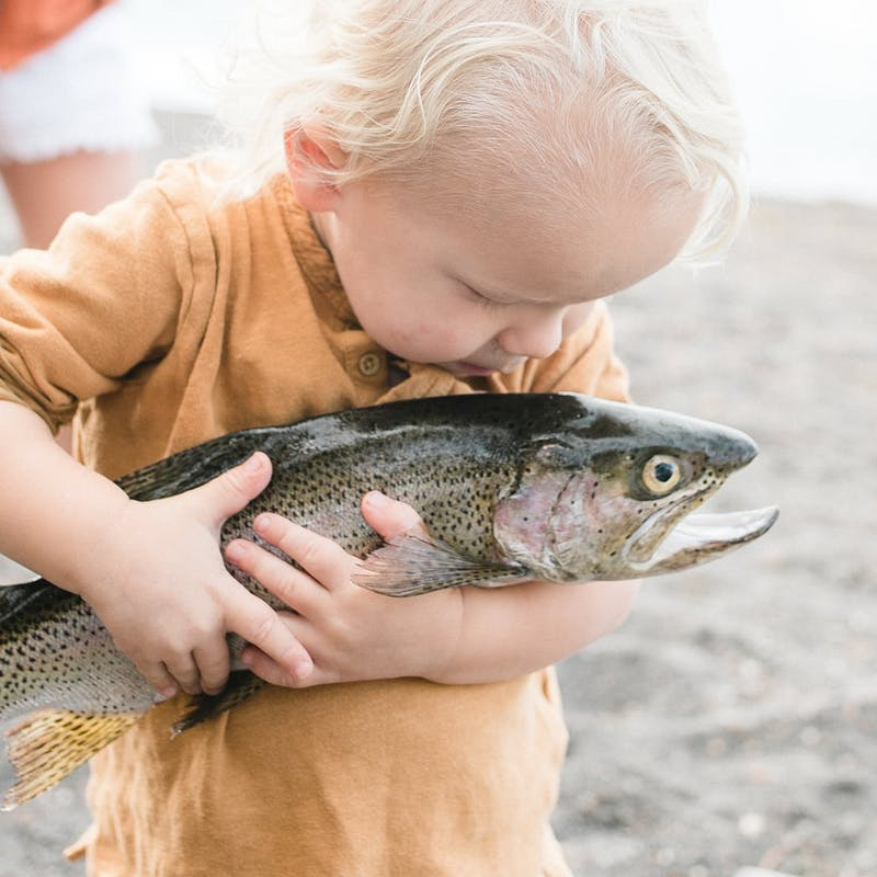 Young toddler holding large fresh trout on shore