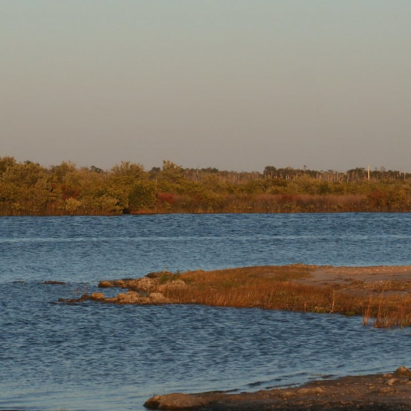 Shores of Ozello Community Park with red-orange grass and blue river