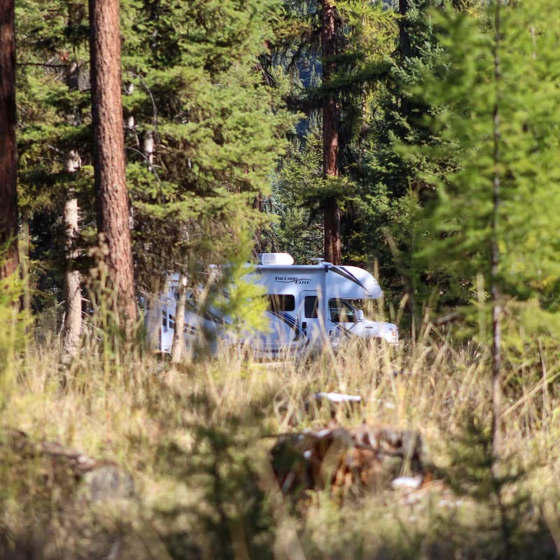 Class C RV partially hidden among green trees and tall, brown grass