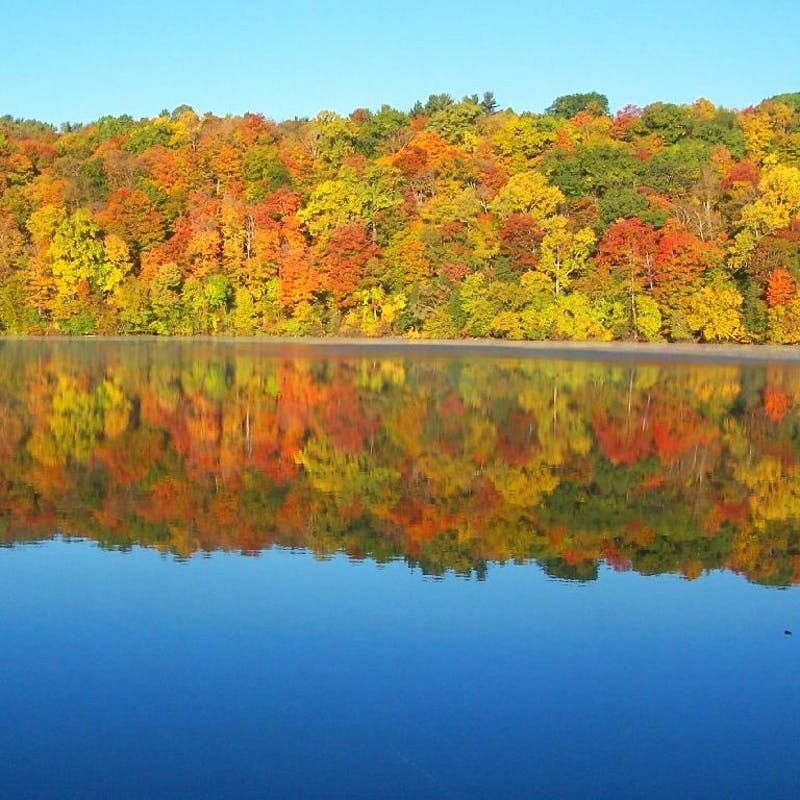 Orange, yellow and red fall trees reflecting on glassy lack in Green Lakes State Park
