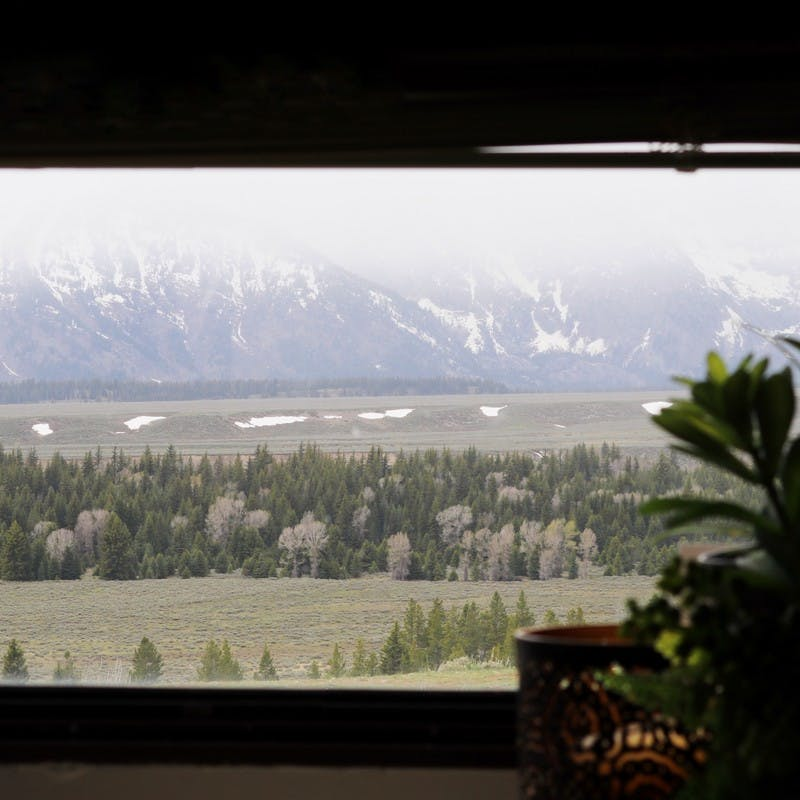 View from inside with a plant, looking out RV window of grassy plains, pine trees and snowy mountains.