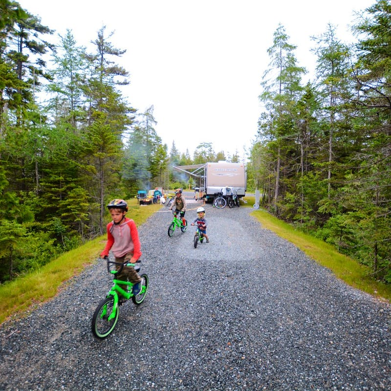 Three young boys riding bikes at a tree-lined campsite.