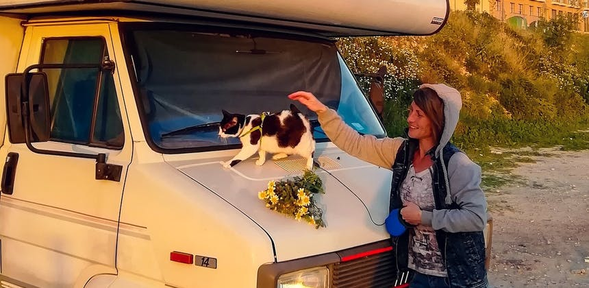 A woman petting a cat who's standing on the hood of an RV.