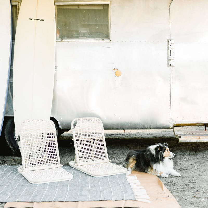 Right out front Airstream RV, two surfboards rest against the side, with two beach chairs, a mat, and a fluffy black and white dog.