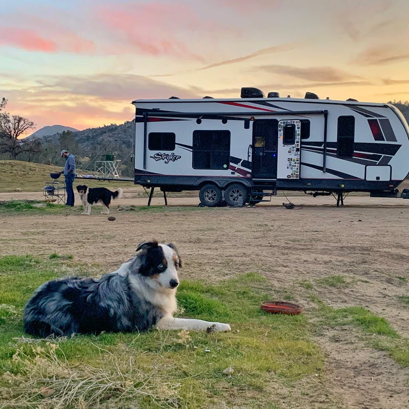 Amy Rekart's dog sits in the grass in front of their Cruiser Styker toy hauler while Mathew cooks on a grill.