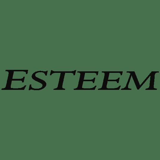 esteem