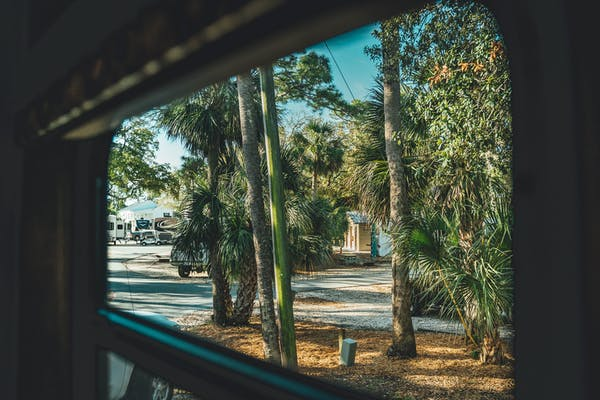 A view out an RV window of beautiful trees in Tybee Island, Georgia.