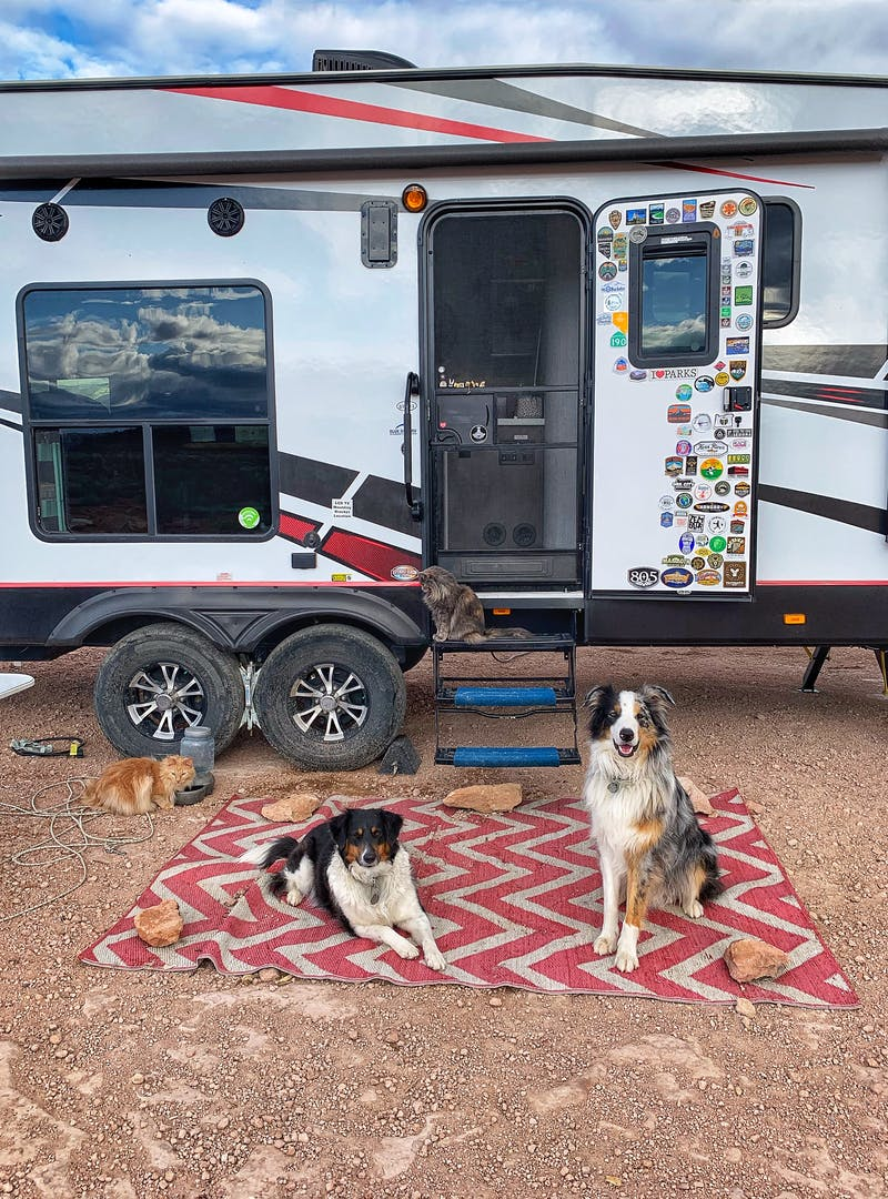 Amy Rekart's two dogs and two cats enjoy time outside of their 2020 Cruiser Stryker RV.