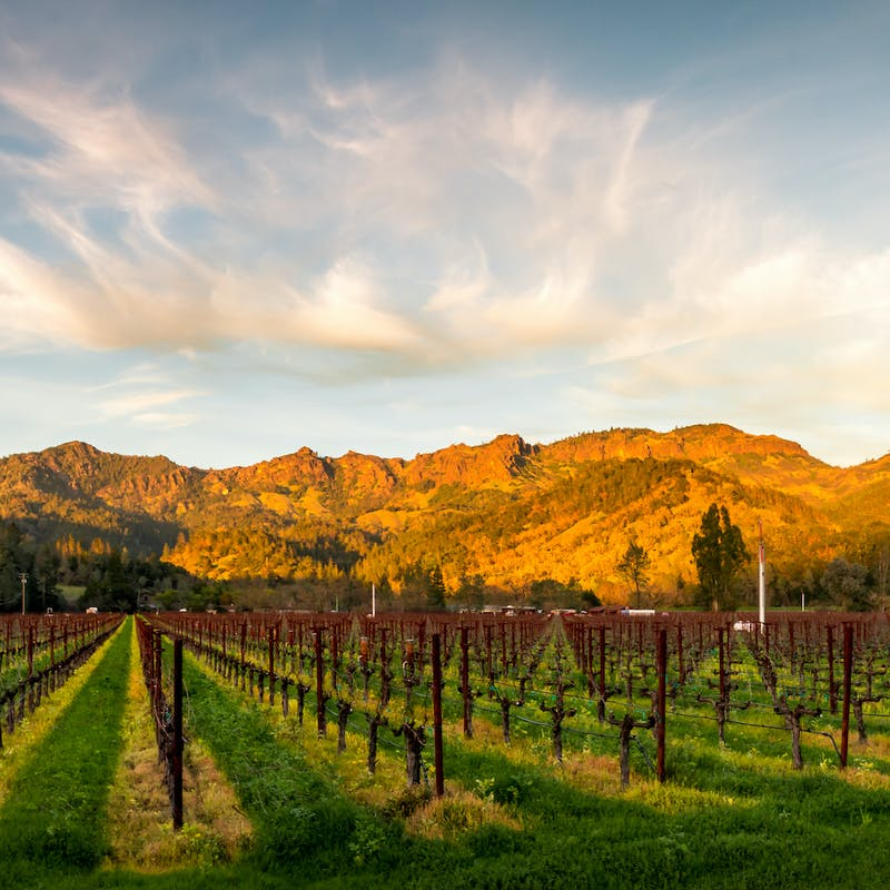 Sun setting on rocky foothills in front of rows and rows of green grass and wine vineyards