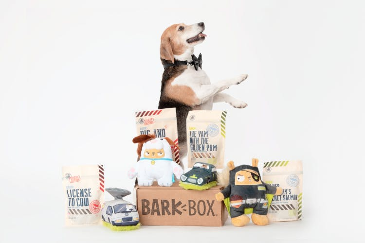 A beagle wearing a bowtie posing in front of a collection of dog toys and treats.