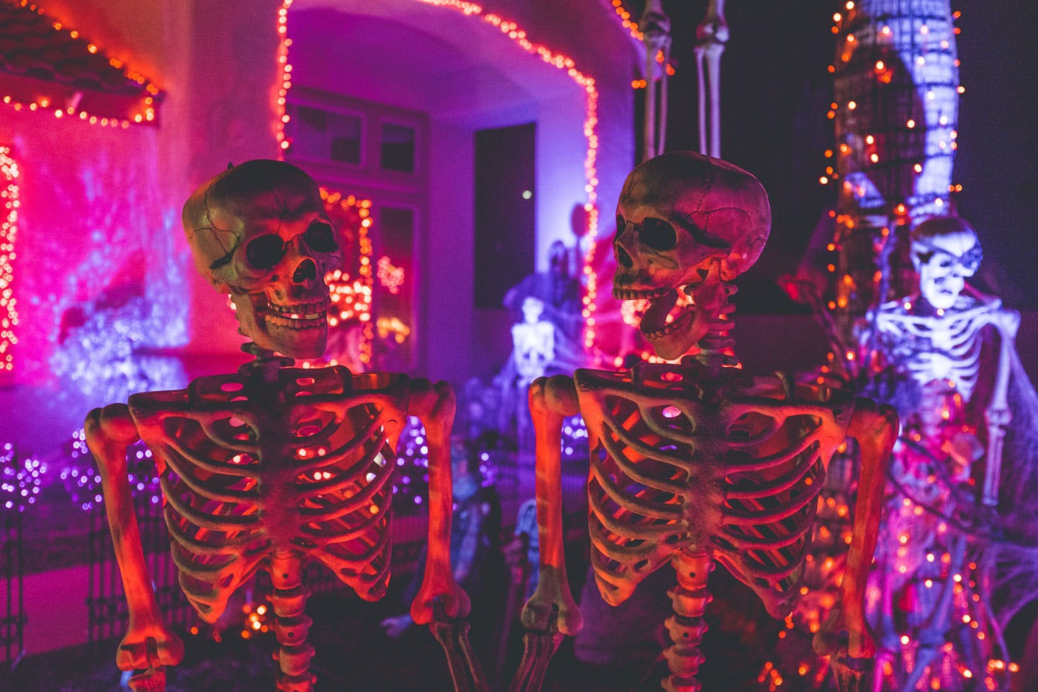 two fake skeletons looking at eachother