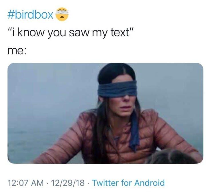 bird box meme