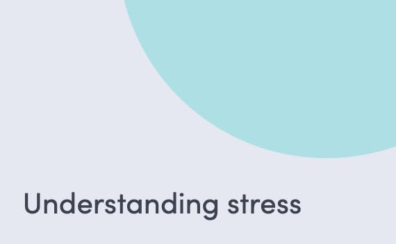 Article about what stress is