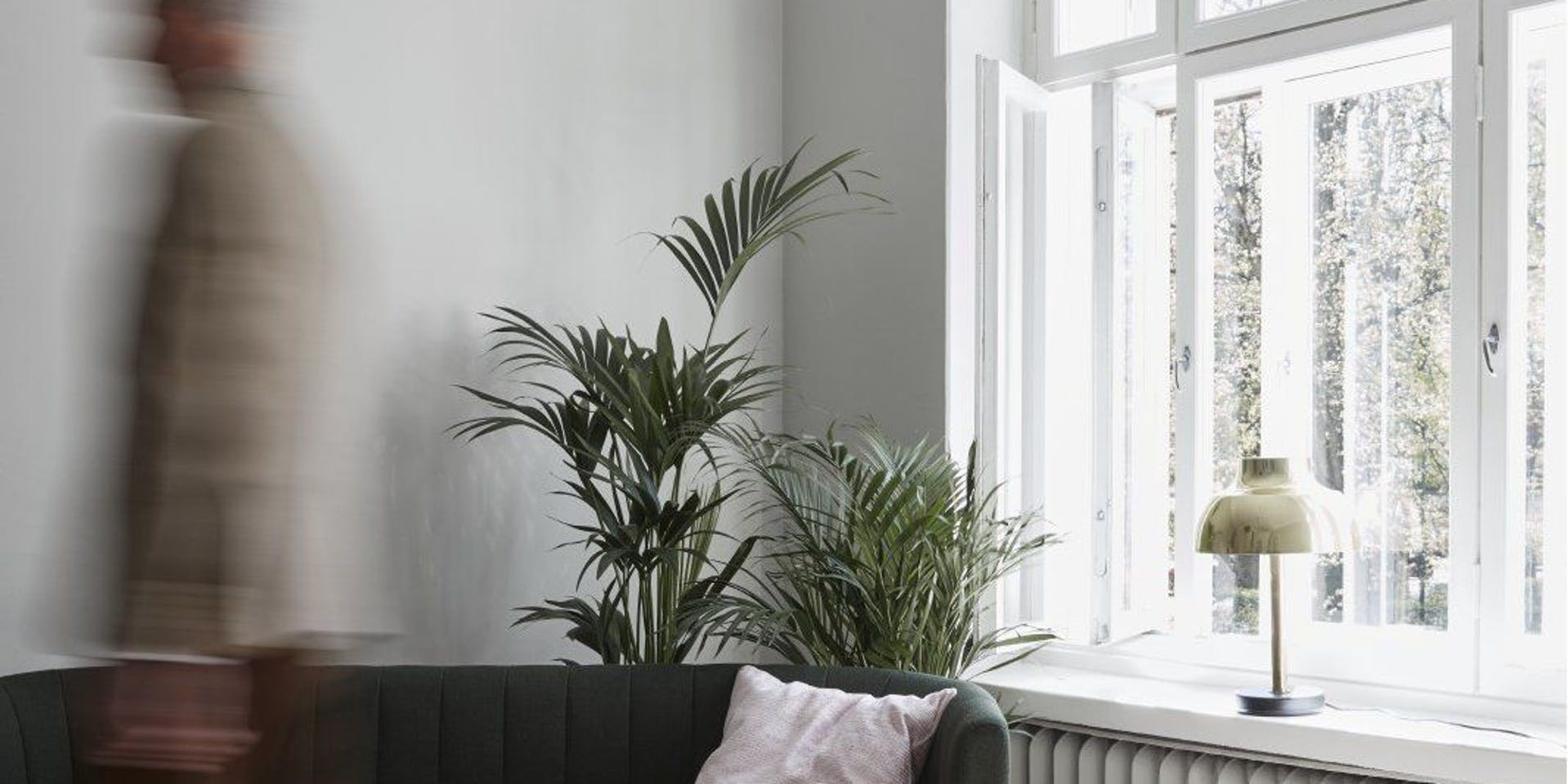 Indoor Air Quality & Zero Voc Paint | Hero Banner | Tikkurila