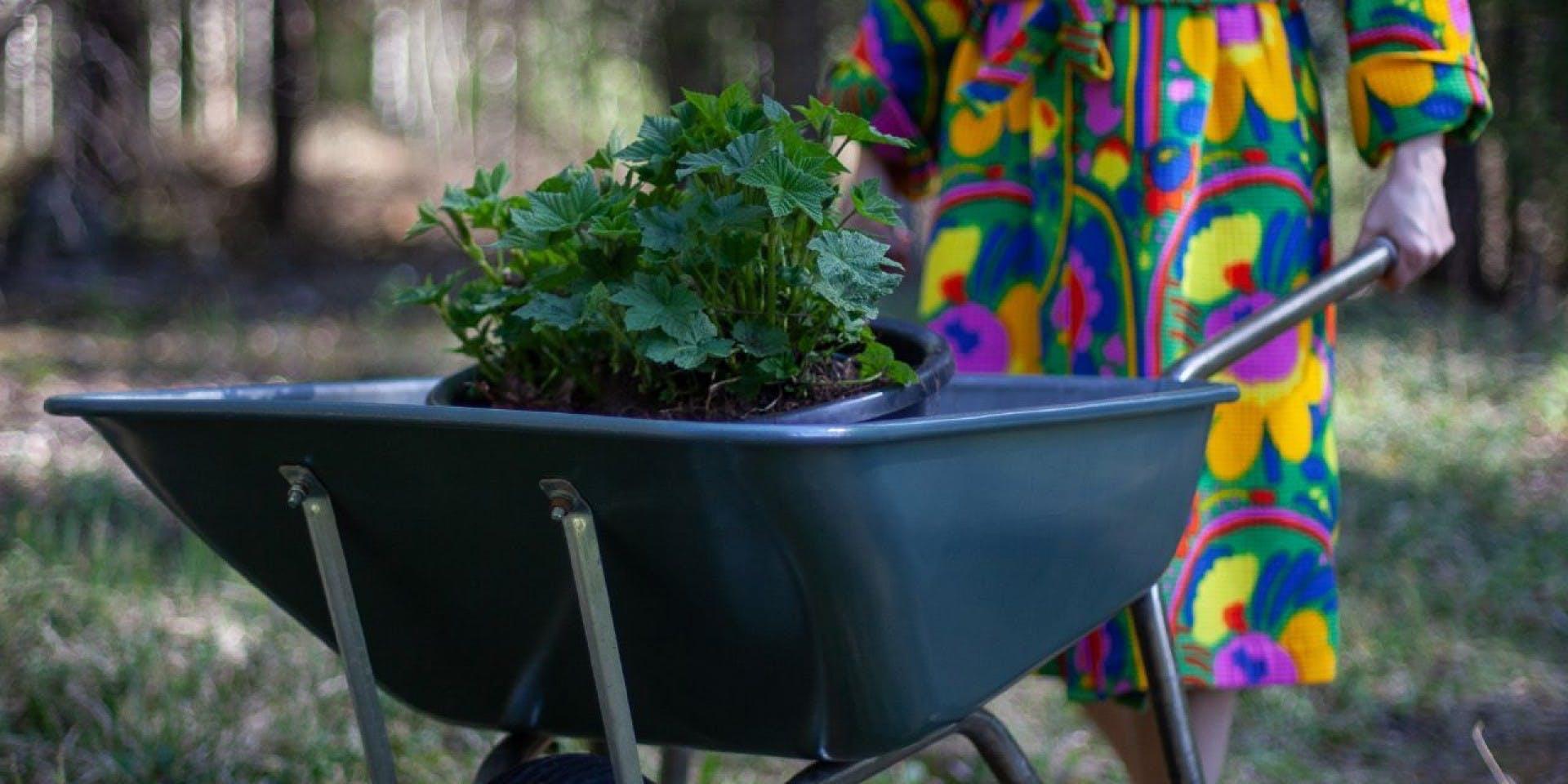 Garden DIY Tips | Hero Image Wheelbarrow | Tikkurila