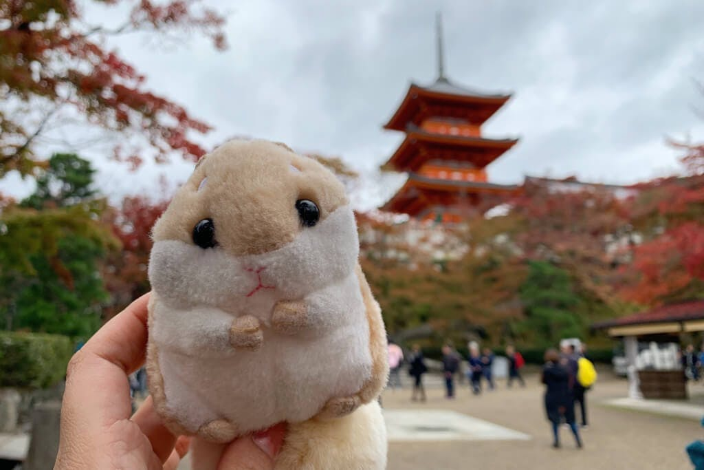 A Japanese hamster toy being held in front of Kiyomizu temple in Kyoto with people in the background