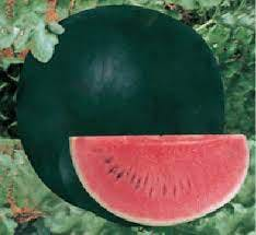 A slice of Densuke Watermelon. The watermelon has dark black skin, and is exceptionally sweet.
