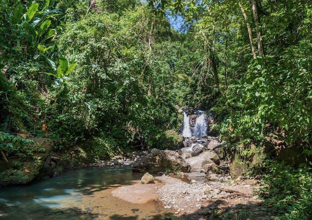Cascade en Martinique