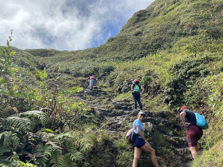 Martinique rando Montagne Pelée