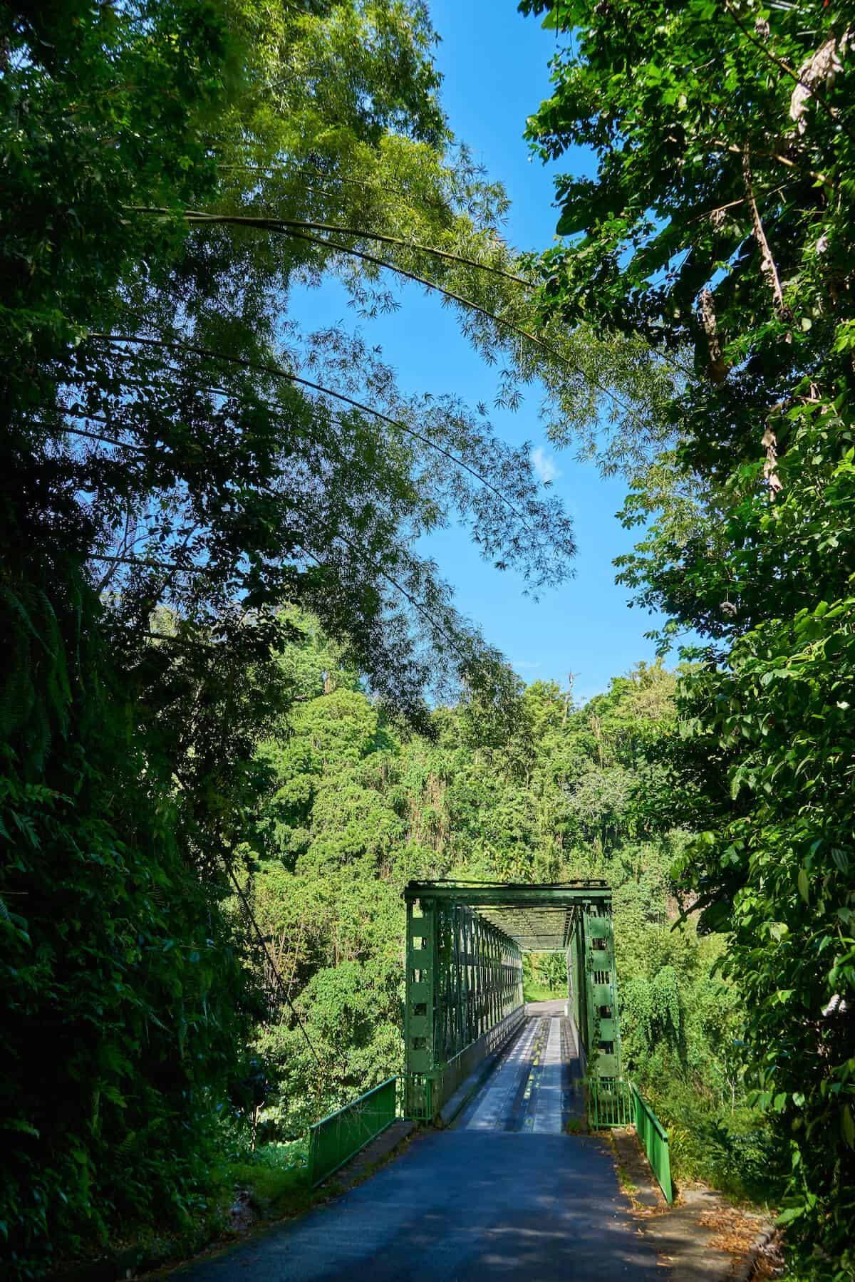 Photo du pont de Grand'Rivière