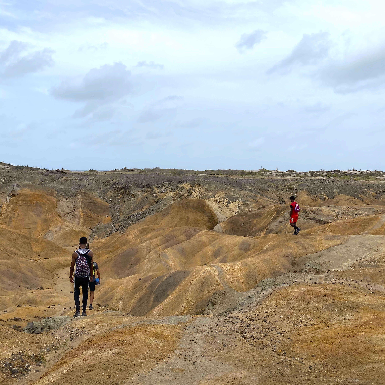 La savane des Pétrifications en Martinique