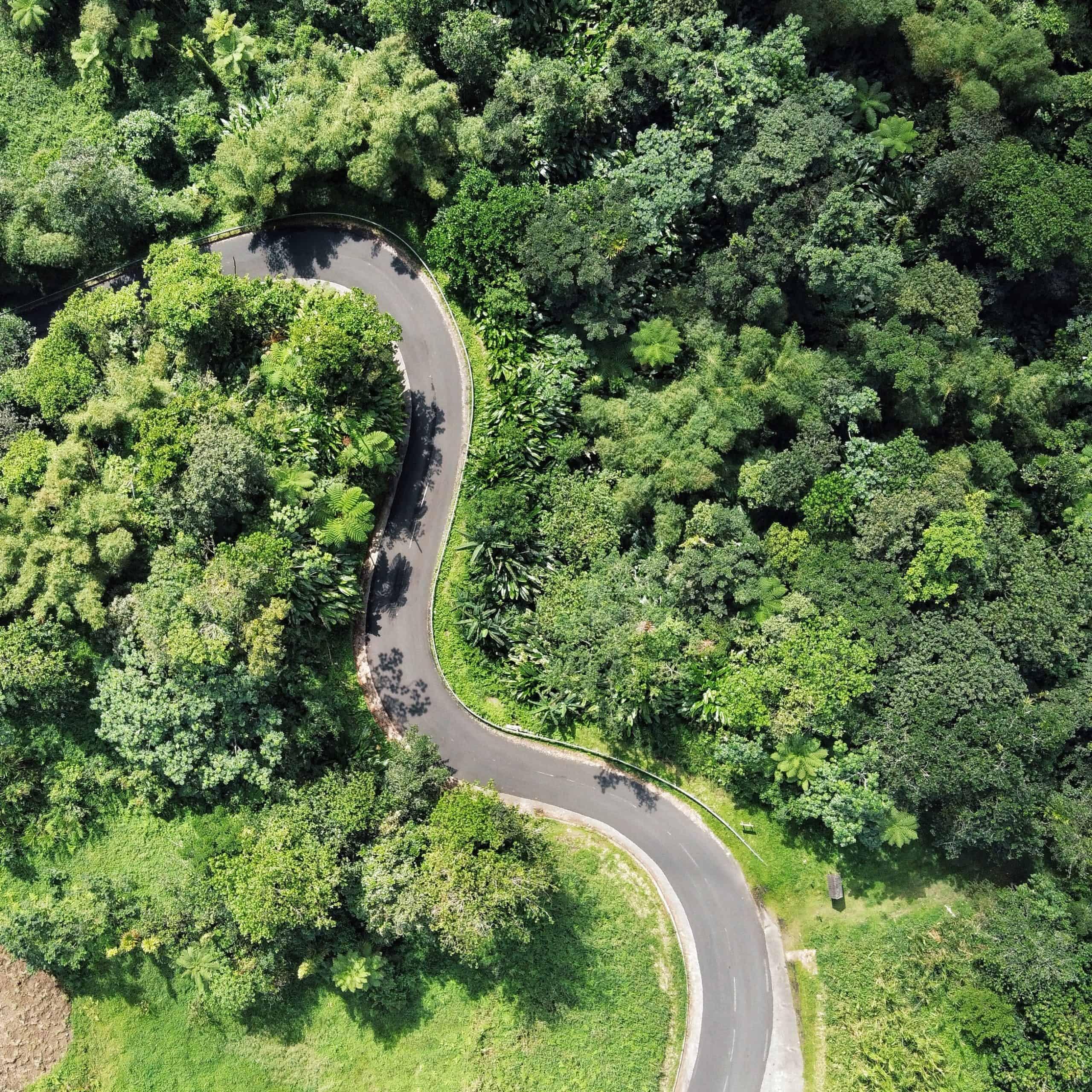 Route en Martinique