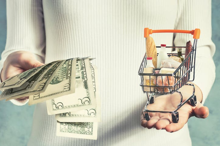 Image shows a person holding a bunch of dollar bills in one hand and a miniature shopping trolley with groceries in the other