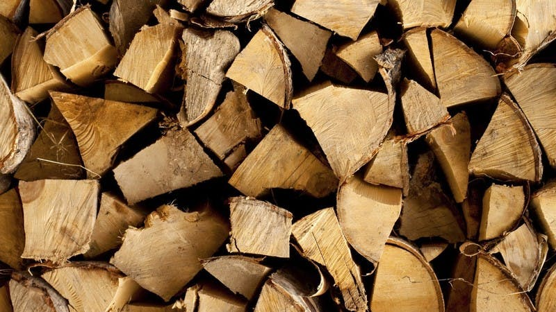Logs for burning in a biomass boiler
