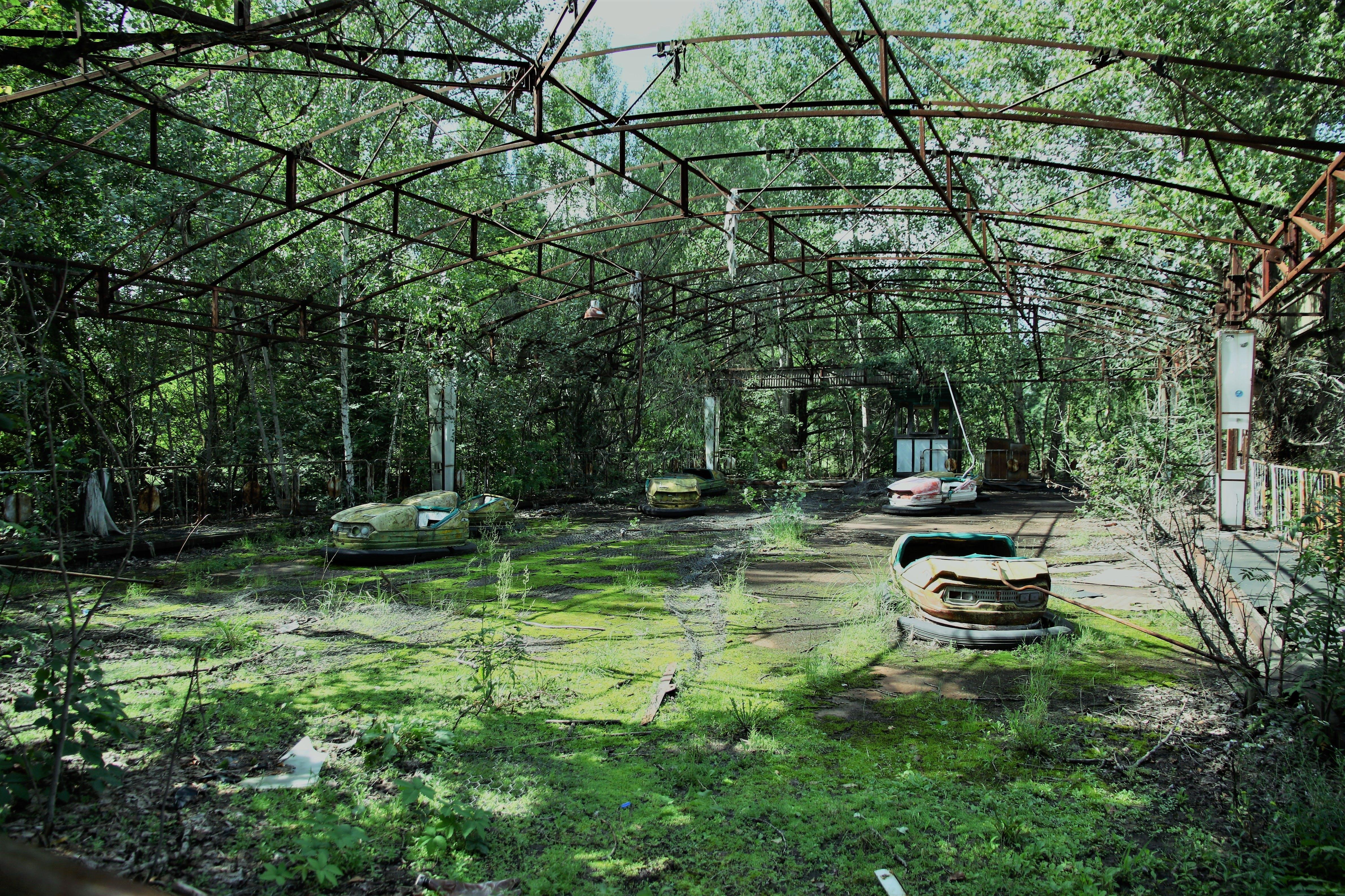 Yasemin Atalay Autoscontri nel parco divertimenti più verde del mondo. Pripyat, Ucraina © IAEA