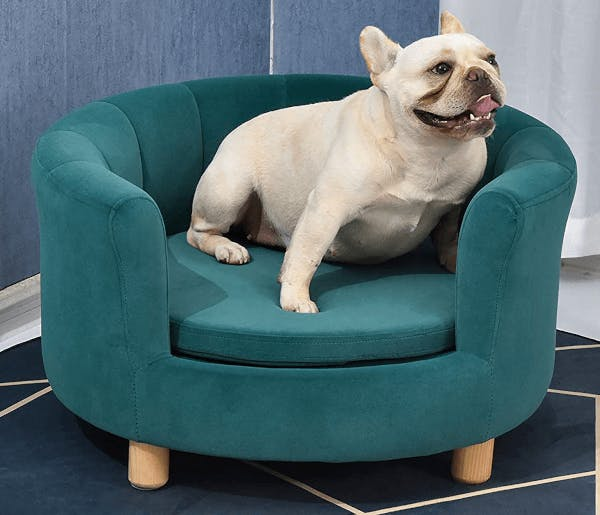 A couch made for dogs