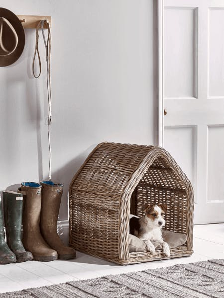 a dog in a rattan bed