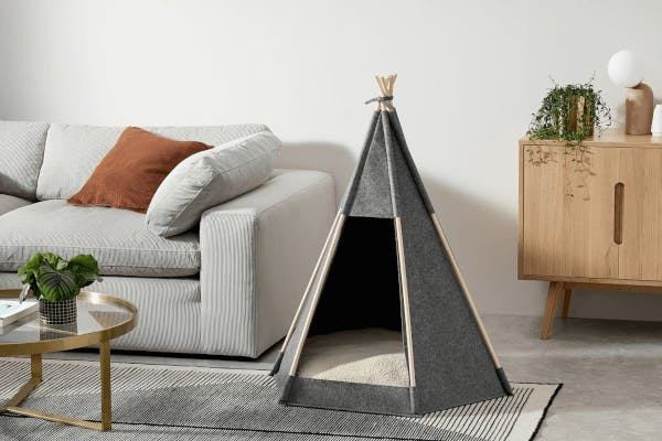 A teepee bed for dogs