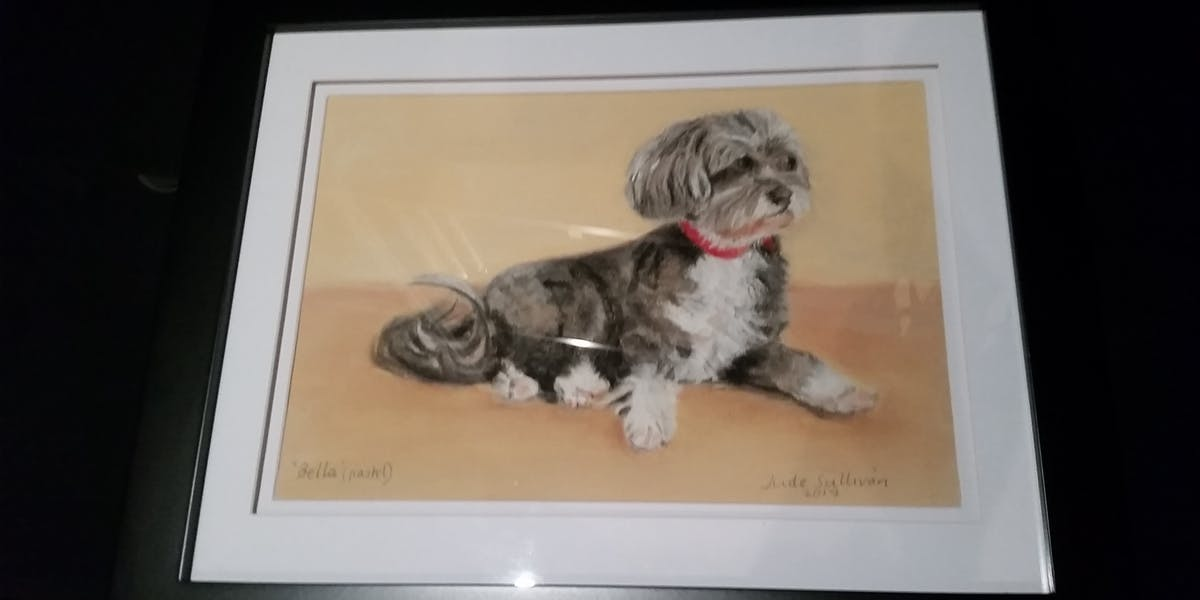 A watercolour painting of a grey and white dog