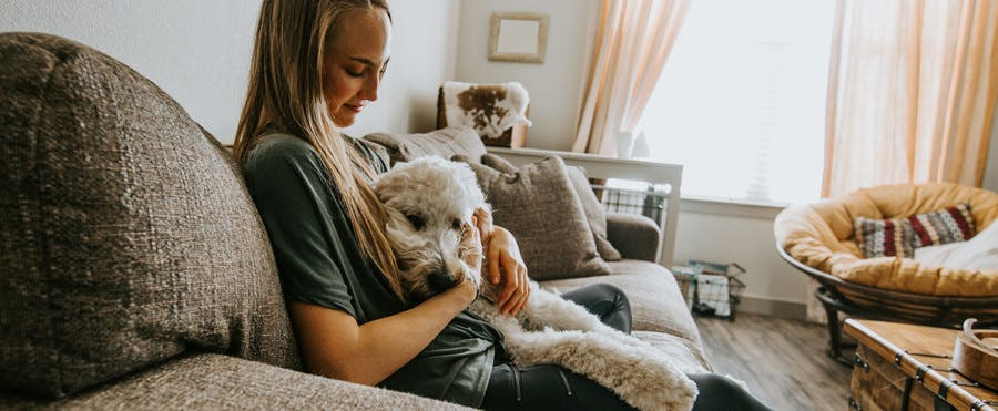 Meet the sitters keeping pets safe and happy in their own home.