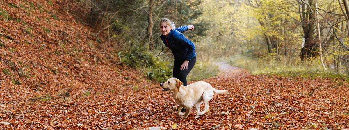 A woman throwing a ball in the woods for a small Golden Labrador.