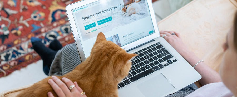 Owner using TrustedHousesitters to find a cat sitter.
