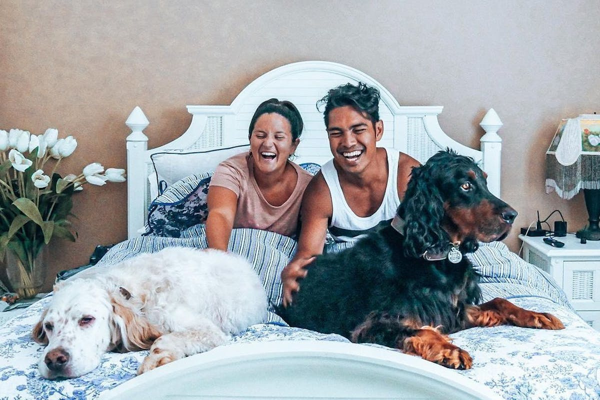A man and a woman sitting on a bed with two large dogs