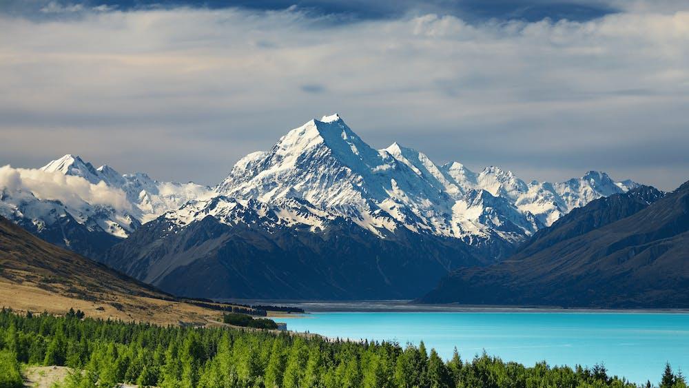 Zeevracht Nieuw-Zeeland