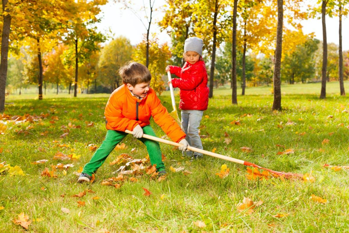A couple of kids raking leaves.
