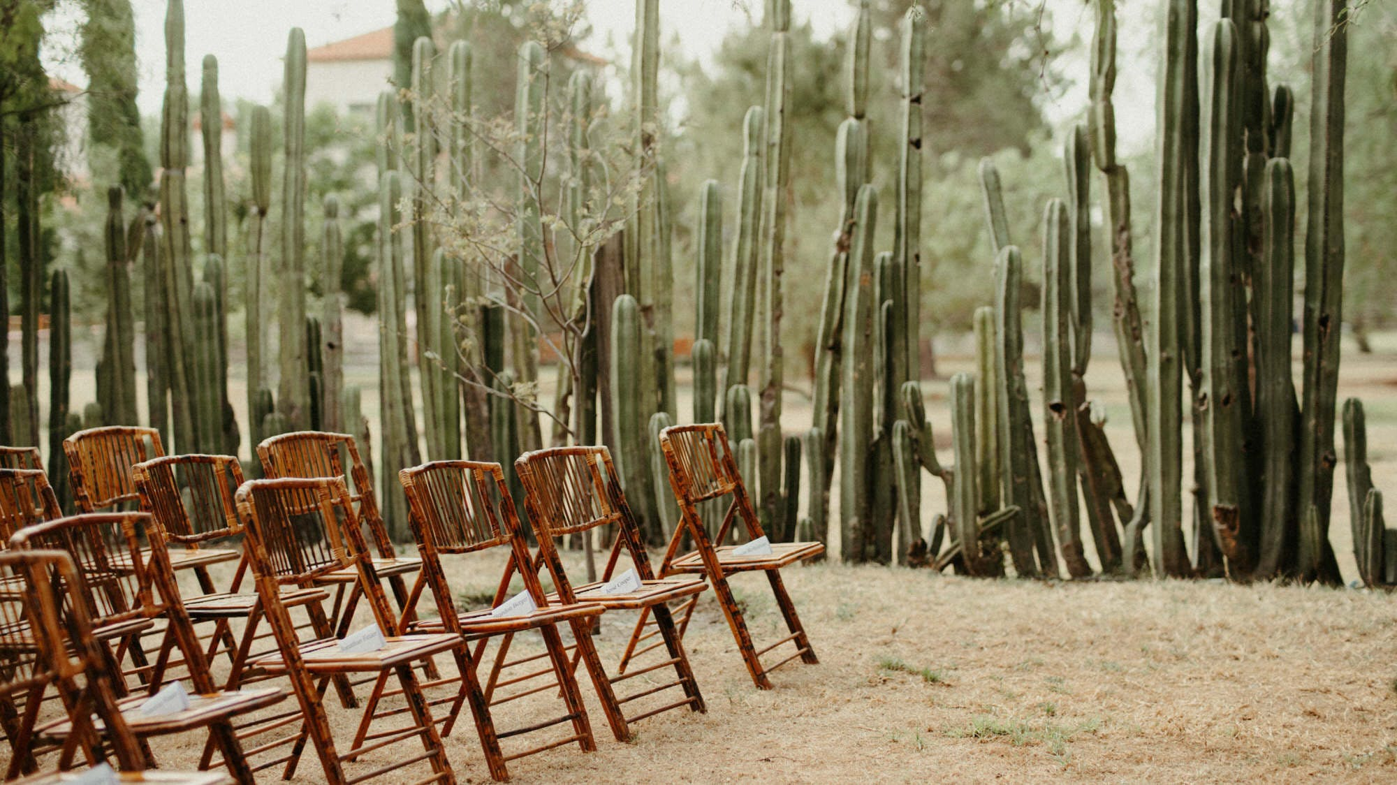 desert jewish inspired wedding