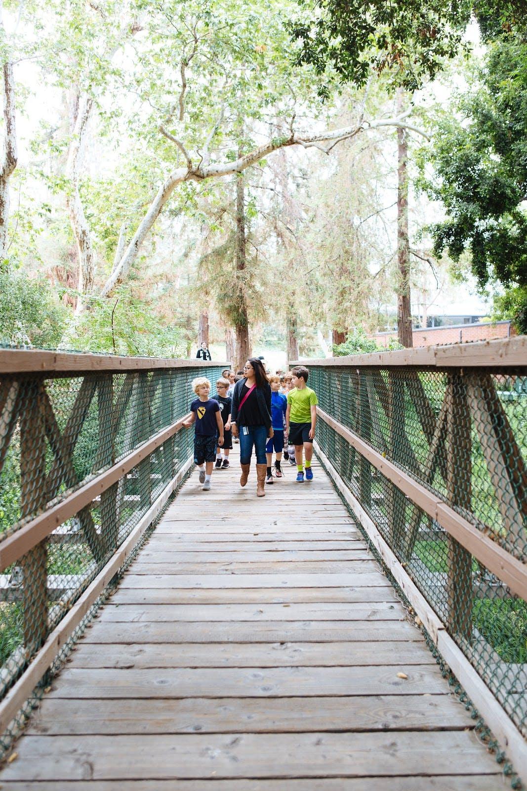 kids walking on a bridge