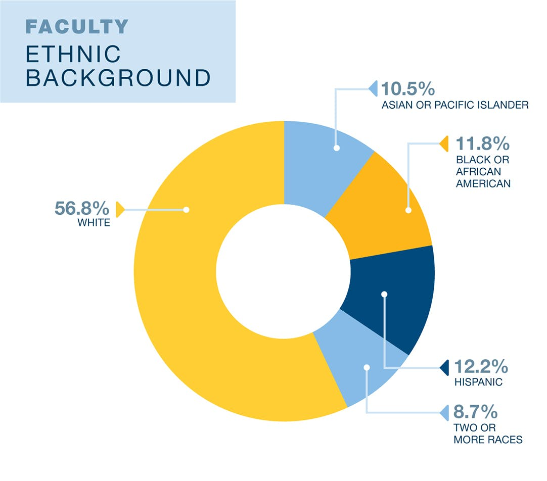 UCLA Education and Information Studies faculty diversity data. 10.5% Asian or Pacific Islander, 11.8% Black or African American, 12.2% Hispanic, 8.7% two or more races, and 56.8% White. Data is from 2019. Currently only data on binary sex as assigned at birth is available.