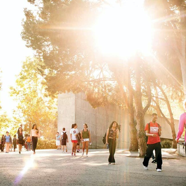 campus sun