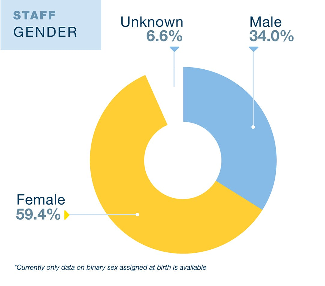 UCLA Education and Information Studies Staff diversity data. 34% Male, 59.4% Female, and 6.6% unknown. Data is from 2019. Currently only data on binary sex as assigned at birth is available.