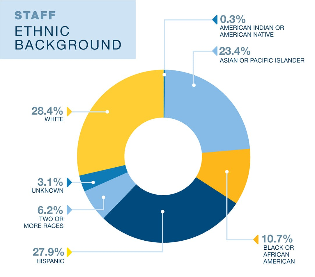 UCLA Education and Information Studies faculty diversity data. 23.4% Asian or Pacific Islander, 10.7% Black or African American, 27.9% Hispanic, 6.2% two or more races, 28.4% White, 3.1% unknown, and 0.3% American Indian or American Native. Data is from 2019. Currently only data on binary sex as assigned at birth is available.