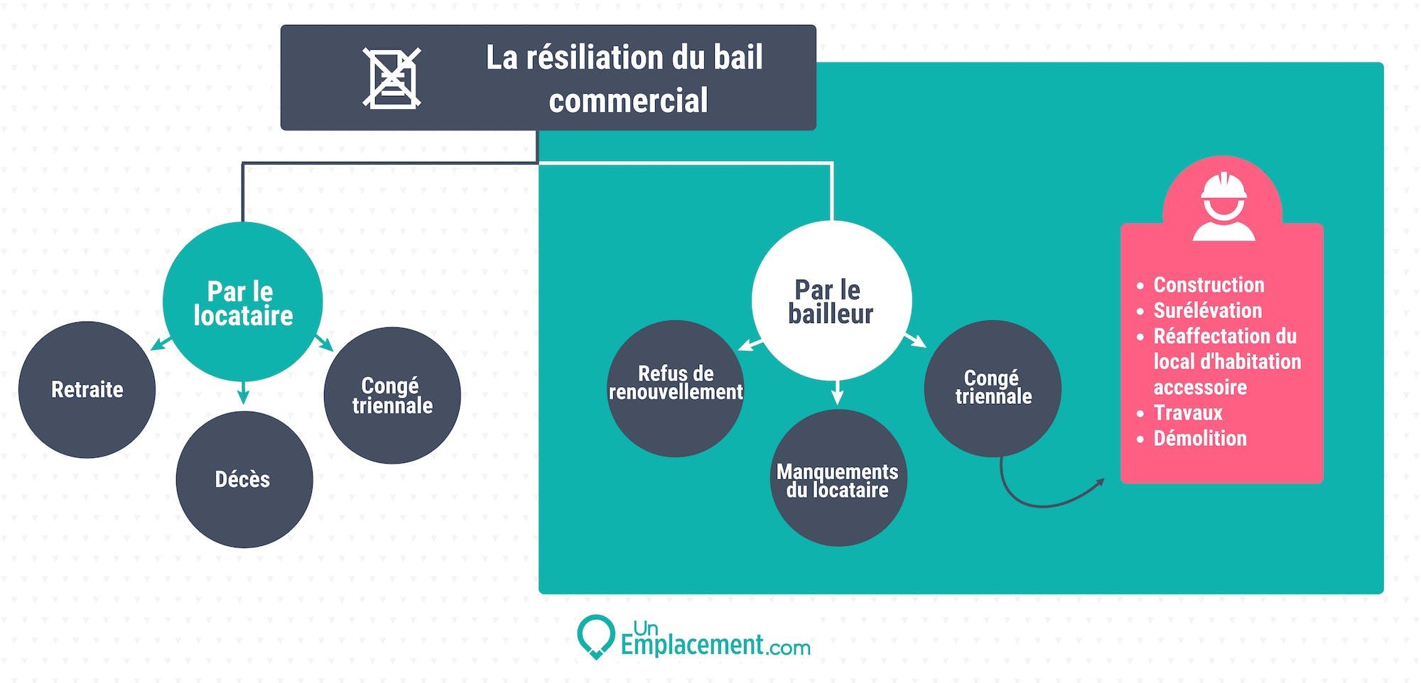 Infographie sur la résiliation du bail commercial