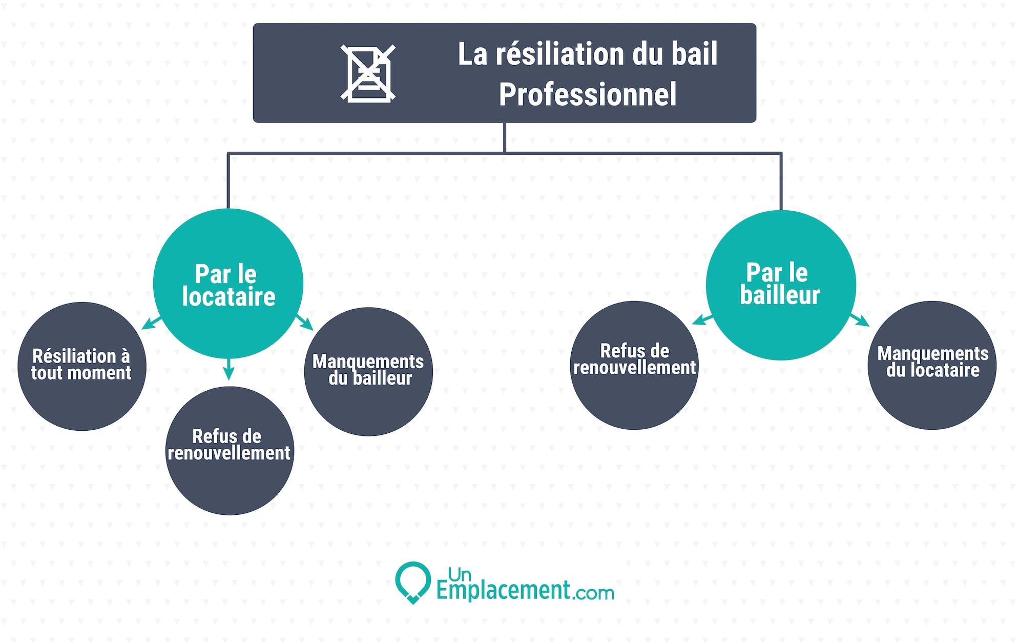 Infographie sur la résiliation du bail professionnel