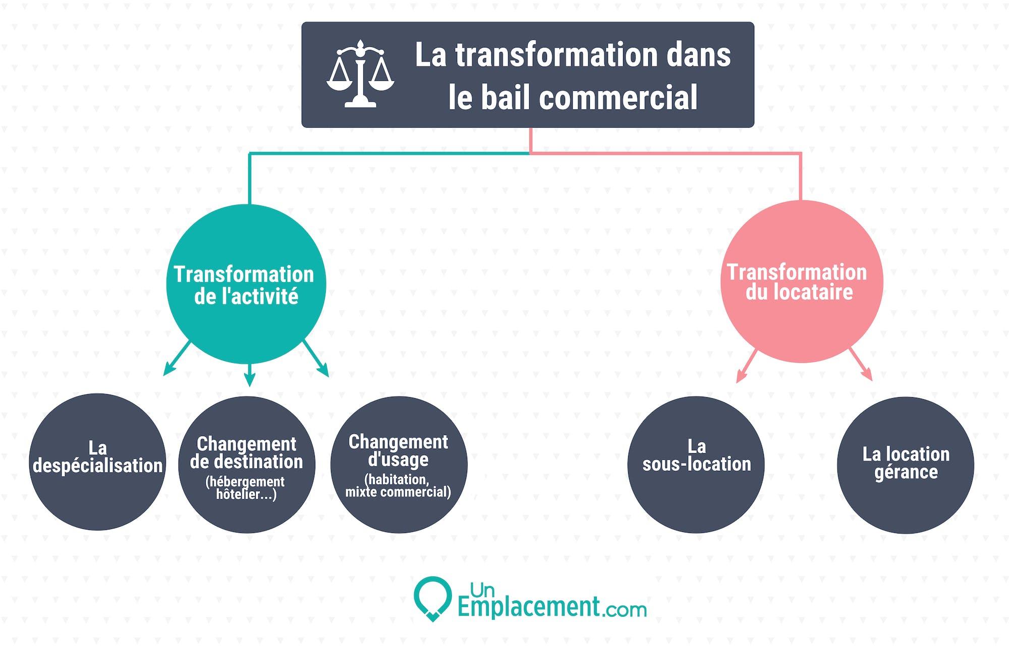Infographie sur la transformation dans le bail commercial